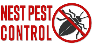 Bed Bug Exterminator Riverdale MD | Nest Services
